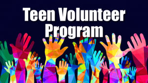 Teen Volunteer Orientation @ Lewisville Library