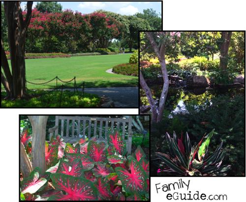 Dallas Arboretum Gardens