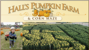 Hall Pumpkin Farm Grapevine @ Halls Pumpkin Farm @ 3420 Hall