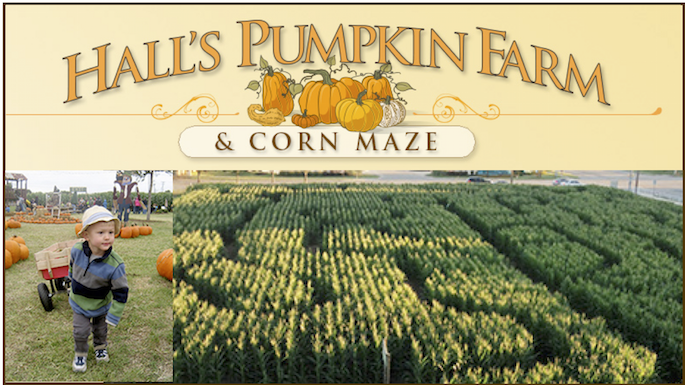 Halls Pumpkin Farm