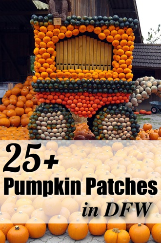 pumpkin-patches-pin