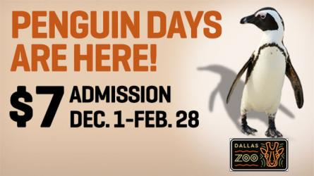 Dallas Zoo Discount Admission Winter