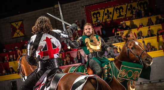 Medieval Times Horses