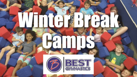 Best Gymnastics Camps Flower Mound