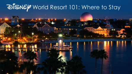 Disney World Resort 101