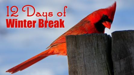 Twelve Days of Winter Break