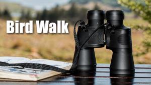 Bird Walk at LLELA @ Lewisville Lake Environmental Learning Area (LLELA)
