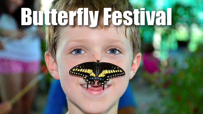 Butterfly Festival Southlake