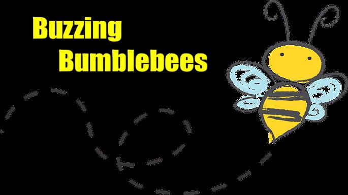 Buzzing Bumblebees Banner