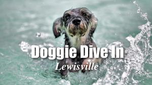 Doggie Dive In Lewisville @ Sun Valley Aquatic Center