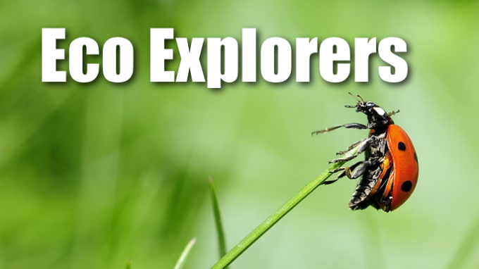 Eco-Explorers @ Biodiversity Education Center