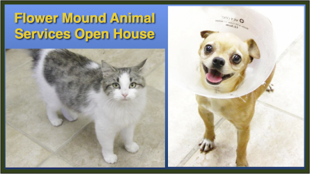 Animal Adoption Center Open House in Flower Mound
