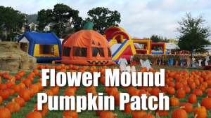 Flower Mound Pumpkin Patch @ Flower Mound Pumpkin Patch