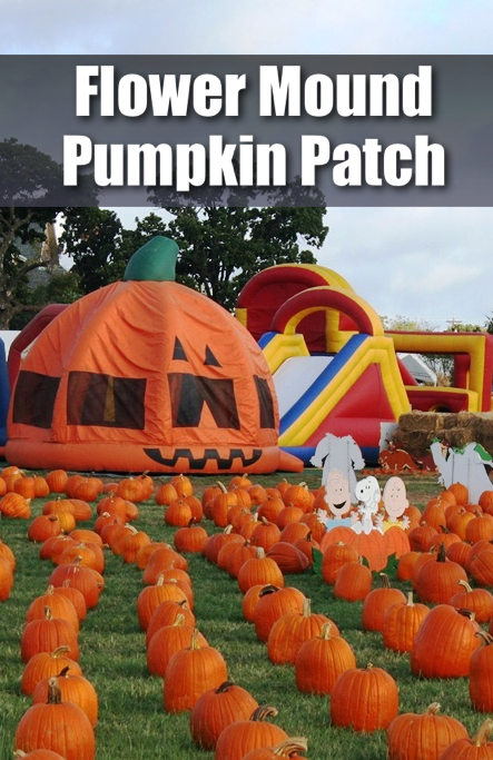 flower-mound-pumpkin-patch-pin