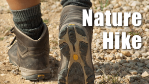 Guided Family Hikes in Southlake @ Bob Jones Nature Center and Preserve
