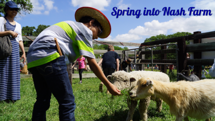 Spring into Nash Farm in Grapevine
