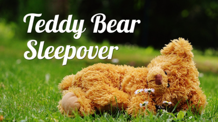 Teddy Bear Lock In