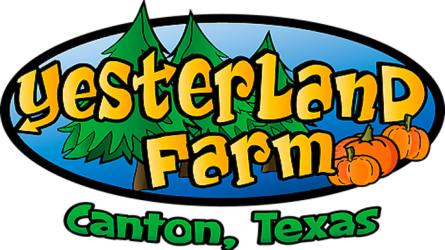 Canton Pumpkin Patch Yesterland Farm