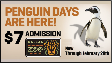 Dallas Zoo Discount