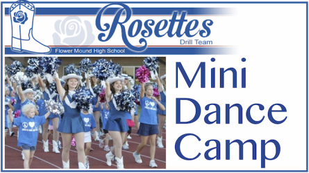 Rosettes Mini Dance Camp