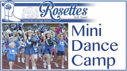 Rosettes Mini Dance Camp