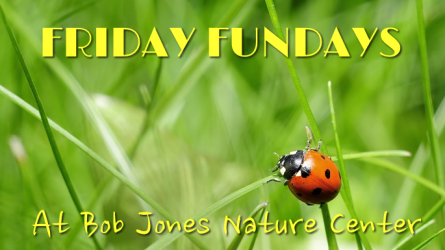 Special Event at Bob Jones Nature Center