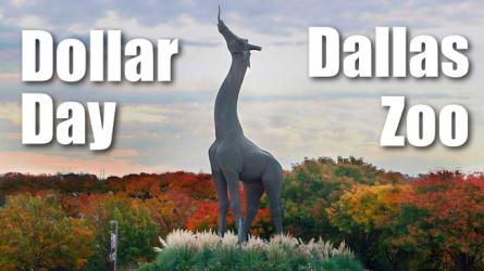 Dallas Zoo Dollar Day