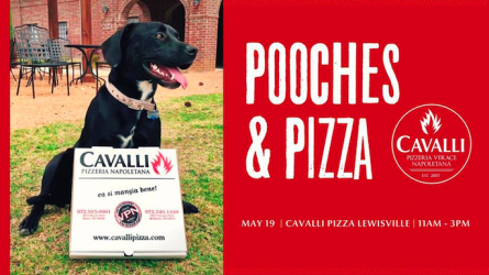 Pooches and Pizza Lewisville