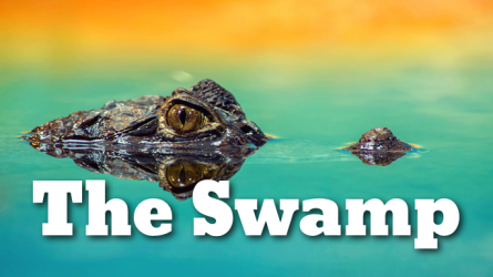 The Swamp Swimming Event