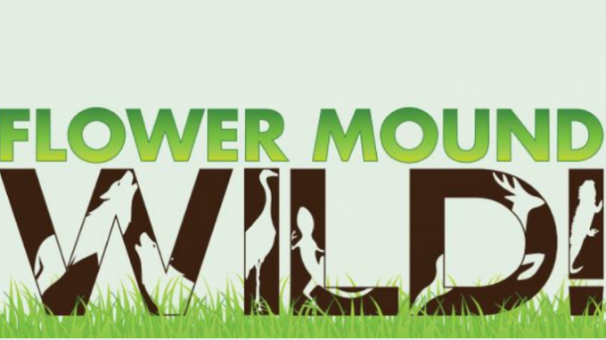 Free Nature Classes Flower Mound @ Flower Mound Library