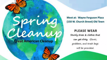 Lewisville Cleanup