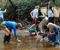 Streamside Scientist @ Biodiversity Education Center