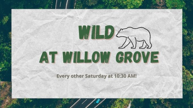 WILD at Willow Grove @ Willow Grove Park